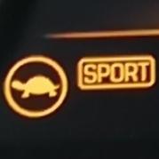 TurtleSport's Company logo