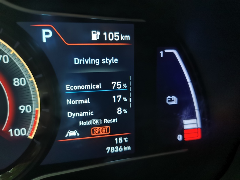 Stil vožnje - Ig
